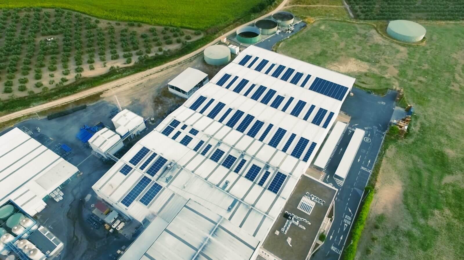Aceitunas Jolca (354 kWp)